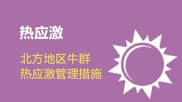 第01节 北方地区牛群热应激管理措施-徐明
