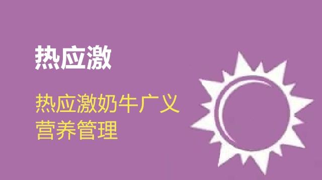 第13节 热应激奶牛广义营养管理-战永波