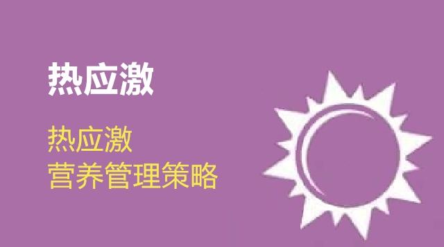 第06节 热应激营养管理策略-徐明