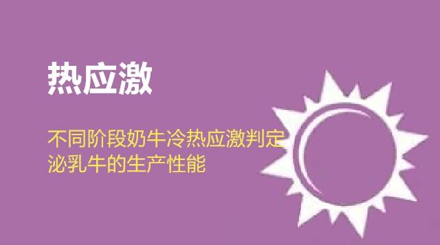 第09节 不同阶段奶牛冷热应激判定:3、泌乳牛的生产性能-徐明
