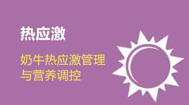 第10节 奶牛热应激管理与营养调控-王艳明