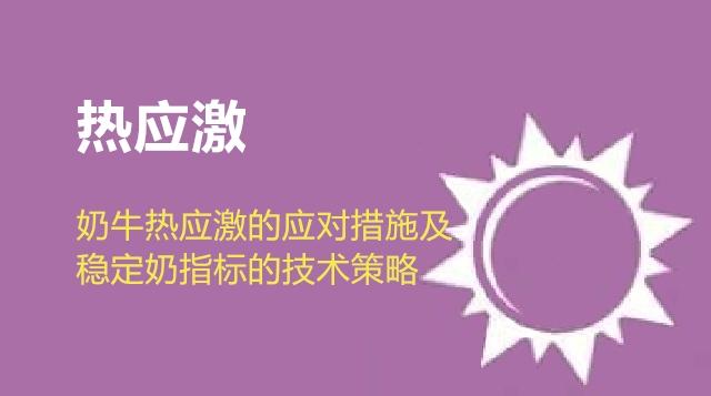 第12节 奶牛热应激的应对措施及稳定奶指标的技术策略-肖玲